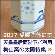 2017 愛媛国体 梅山窯の太陽特集