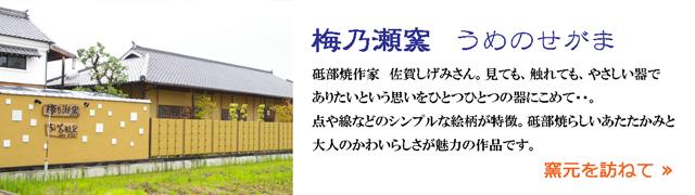 砥部焼 梅乃瀬窯のご紹介